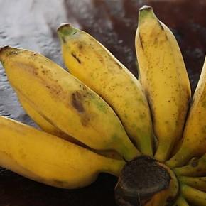 banana-naam-va