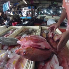 Рынок морепродуктов в Джимбаране, Бали. Видео.