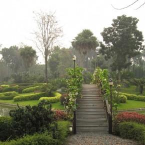 Ботанический сад рядом с Чианг Маем (Tweechol Botanical Garden)
