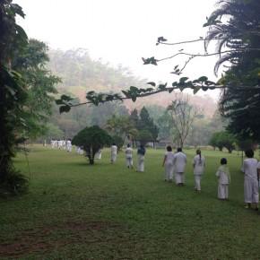 Випассана в лесном монастыре Там Вуа